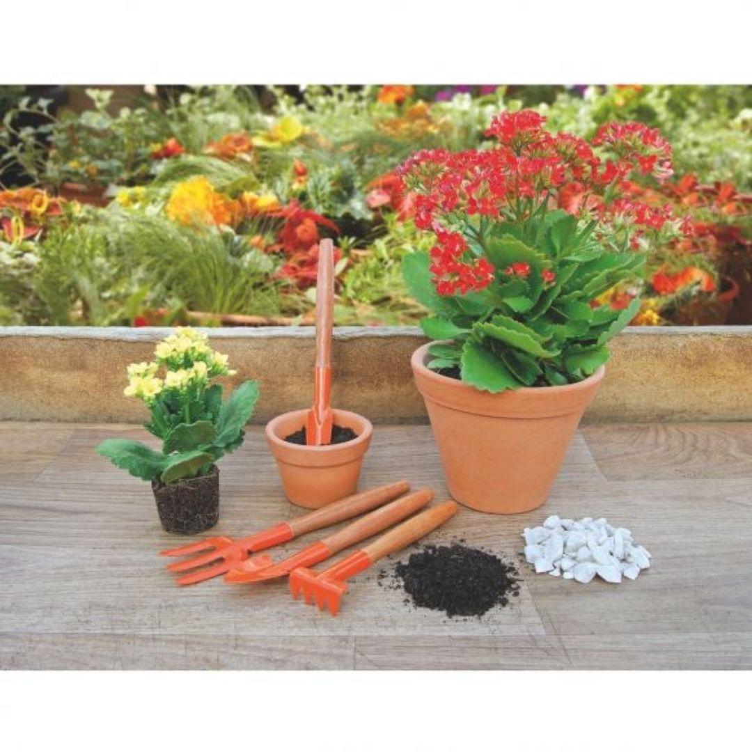 Conjunto Para Jardinagem 4 peças 78102/801 Tramontina