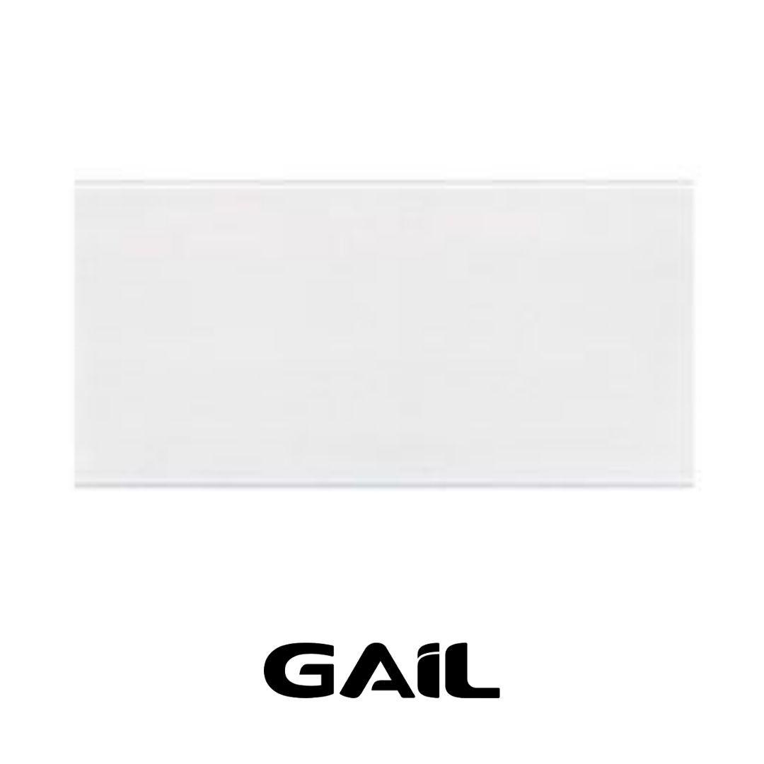 Piso Cerâmico Industrial 240 x 116mm Branco Gelo 1009 / 3001 Caixa c/ 33 peças Gail