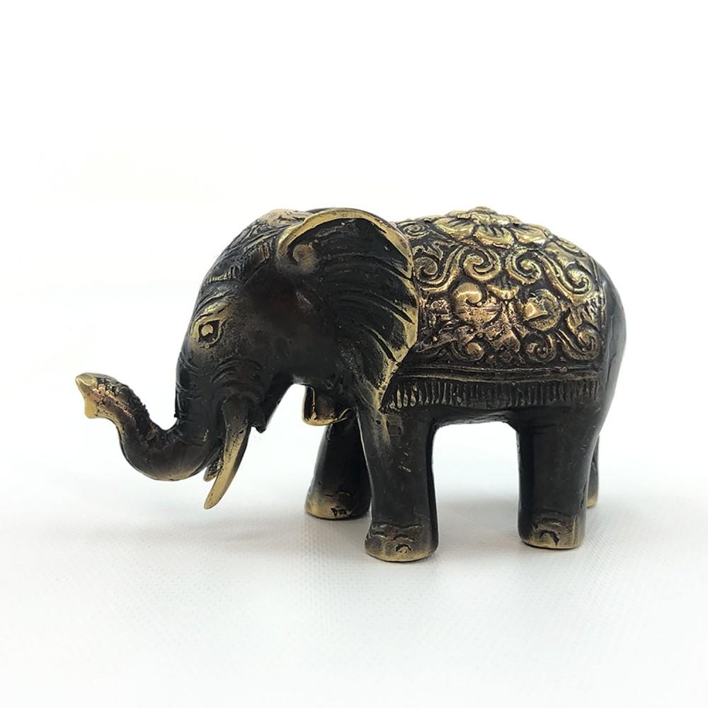 Elefante - Foto 2