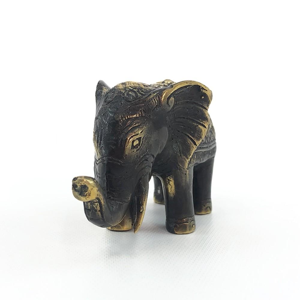 Elefante - Foto 5