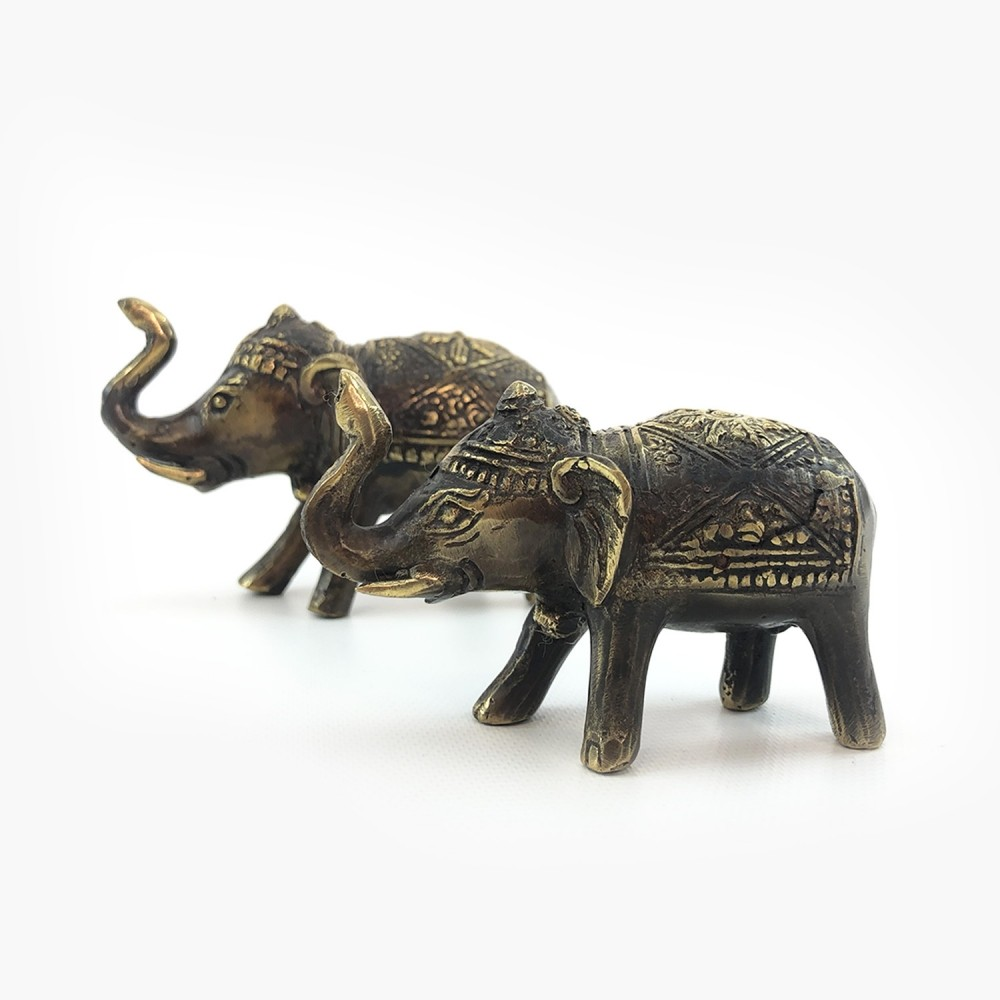 Elefante  - Foto 1