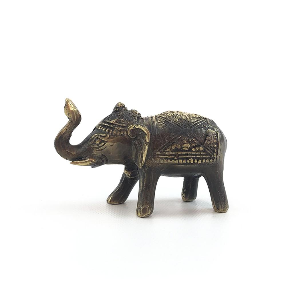Elefante  - Foto 6