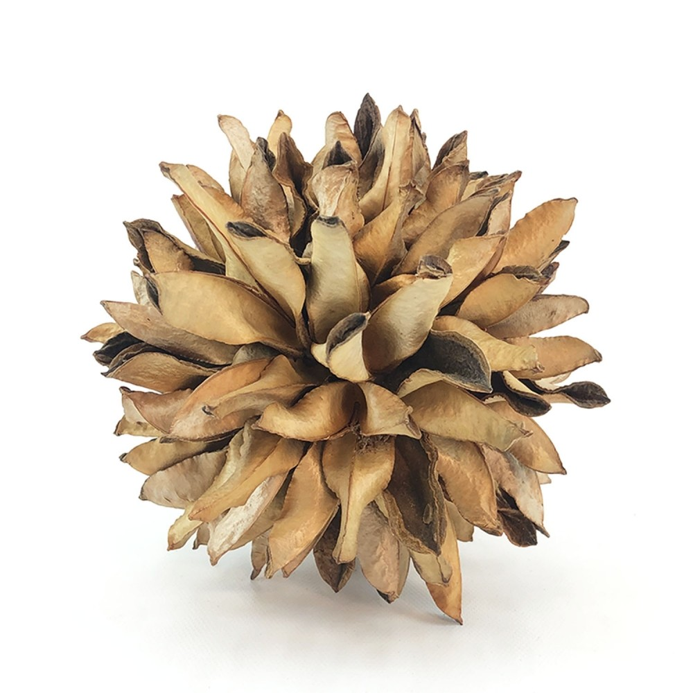 Topiaria Bate-Caixa Bege - Foto 2