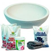 Kit Completo Rosa Do Deserto Vaso Europa 41 Cimento