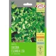 Original Chicoria Escarola Lisa