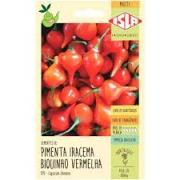Original Pimenta Iracema Biquinho Vermelha
