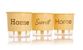 Conjunto Vaso 03 - Home Sweet Home - Pessego