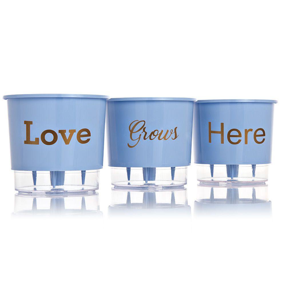 Conjunto Vaso 03 - Love Grows Here - Azul Serenity