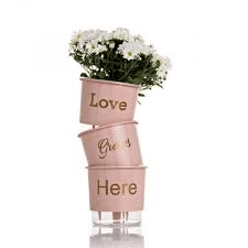 Conjunto Vaso 03 - Love Grows Here - Rosa Quartz