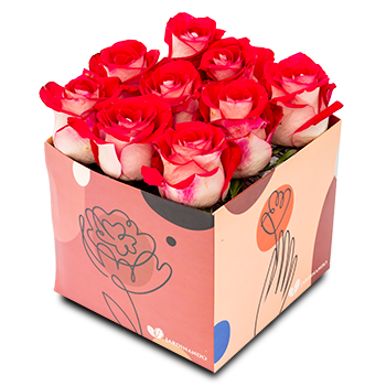 Flor de Corte Rosa Bluez C/ 9 Un