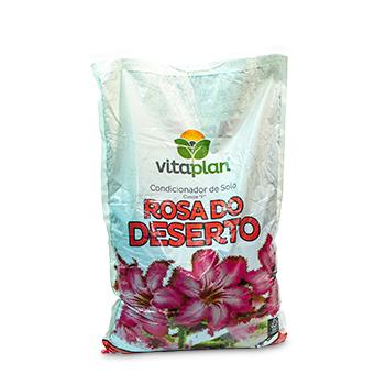 Kit Completo Rosa Do Deserto Vaso Esfera Cimento