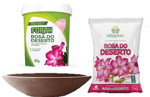 Kit Cultivo Rosa Do Deserto