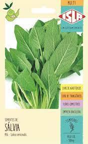 Multi Salvia Salvia