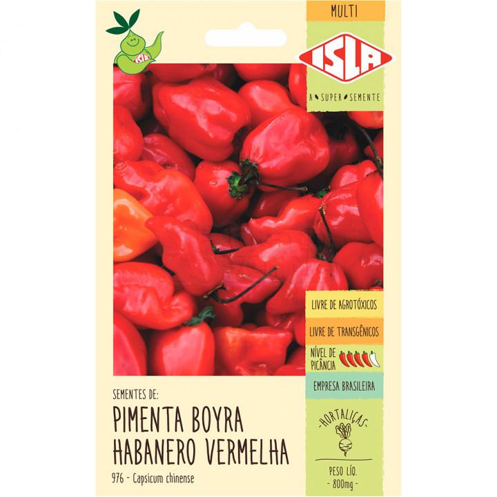 Original Pimenta Boyra Habanero Vermelha