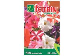 Petunia Ana Compacta Sortida 80Mg - Flor