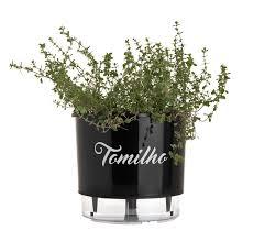 Vaso Autoirrigável 03 Preto Linha Gourmet Tomilho