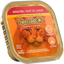 SPECIAL CAT PATE ADULTO CARNE 100 g
