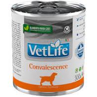 VET LIFE CANINE WET CONVALESCENCE 300 g