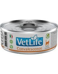 VET LIFE FELINE WET CONVALESCENCE 85 g