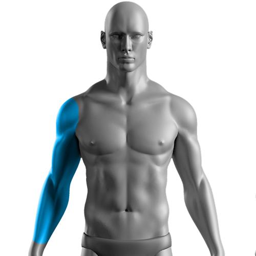 10 Sessões de Depilação a Laser Braço  Completo Masculino