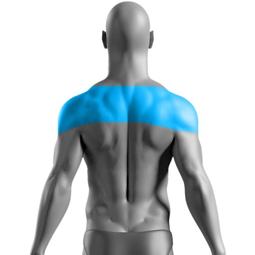 10 Sessões de Depilação a Laser Ombros Masculina