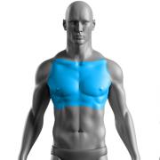 10 Sessões de Depilação a Laser Tórax Masculino