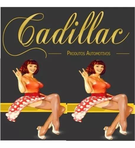 APC interiores Cadillac 650 ml