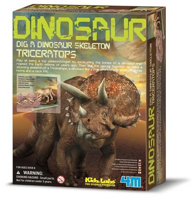 Kit Escavação de Esqueleto - Triceratopo - 4M