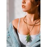 Gargantilha Aloe Vera