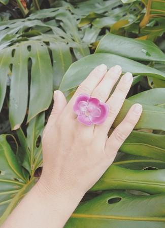 Anel Orquídea Rosa
