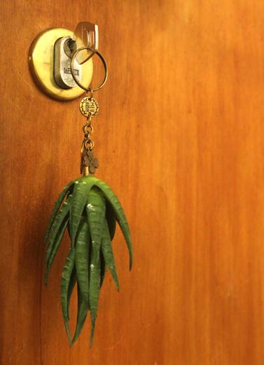 Chaveiro com Plantas