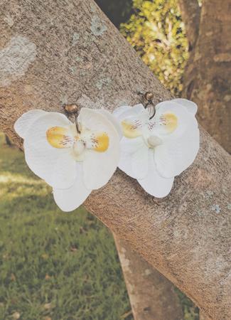 Kit minha flor