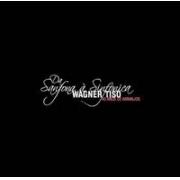Wagner Tiso Da Sanfona a Sinfonica 40 anos de arranjos   BOX CDs