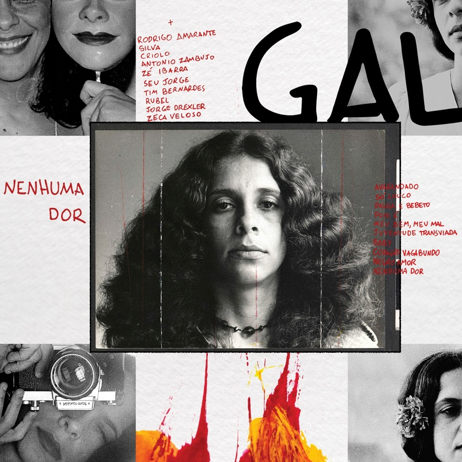 Gal Costa Nenhuma Dor   CD