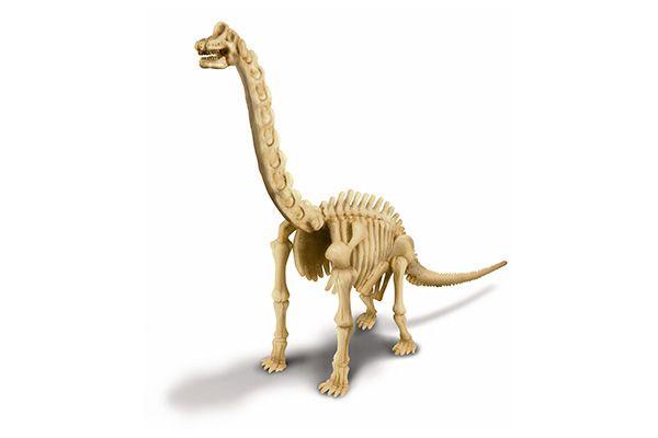 Kit de escavação de dinossauro Braquiossauro   4M