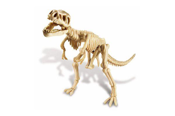Kit de escavação de dinossauro Tiranossauro   4M