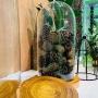 Cover em vidro artesanal polonês Liso 24x45cm