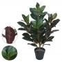 Ficus Elástica Verde c/Purpura c/Pote 85cm