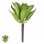 Folhagem de Agave Verde Permanente 19cm