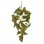 Folhagem de Caladium Verde c/Vermelho Permanente 55cm