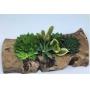 Jardineira de Tronco artesanal - Largura 30cm Cor: madeira