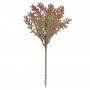 Suculenta Sedum Vermelho 20cm