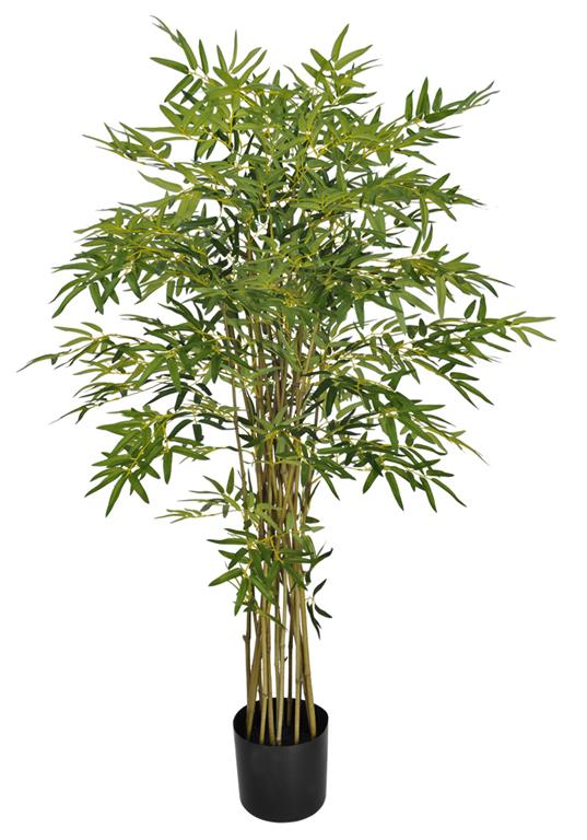 Bamboo Australiano Verde Permanente c/Pote 1,6m