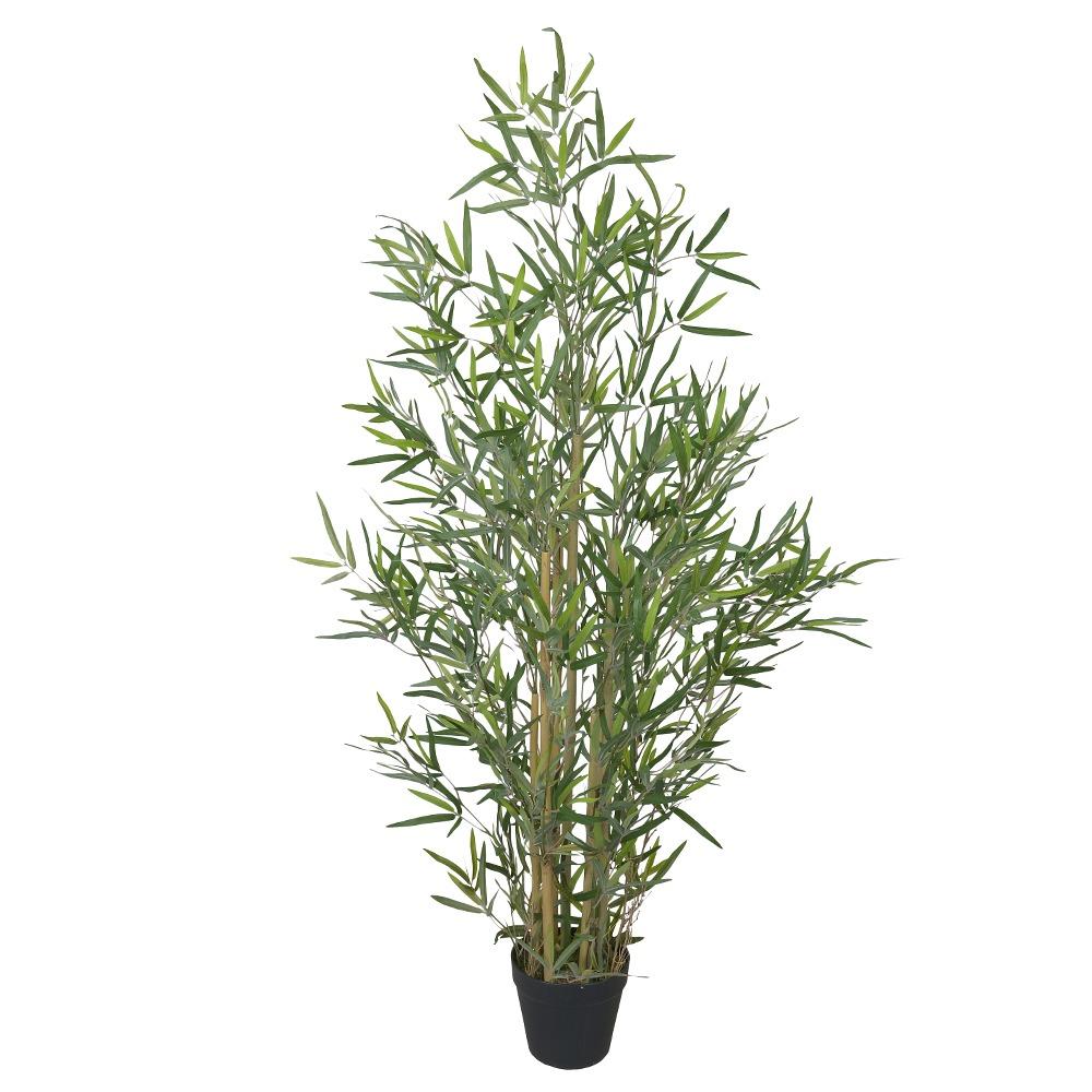 Bamboo Verde Permanente c/Pote 1,2m