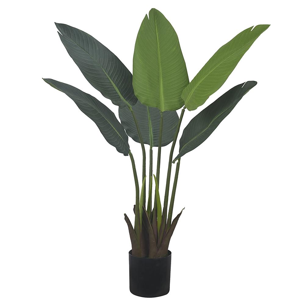 Bananeira de Jardim Verde Permanente c/Pote 78cm