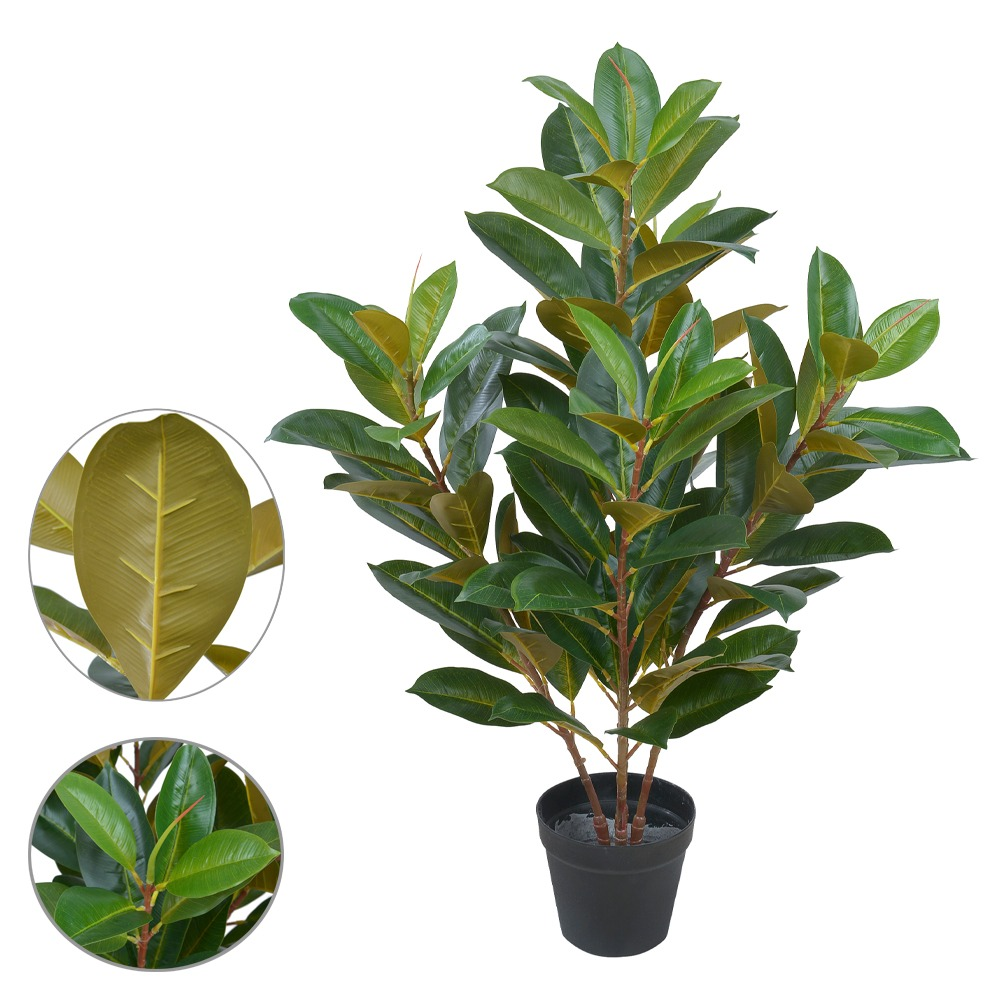 Ficus Elástica Verde c/Amarelo Permanente c/Pote 85cm