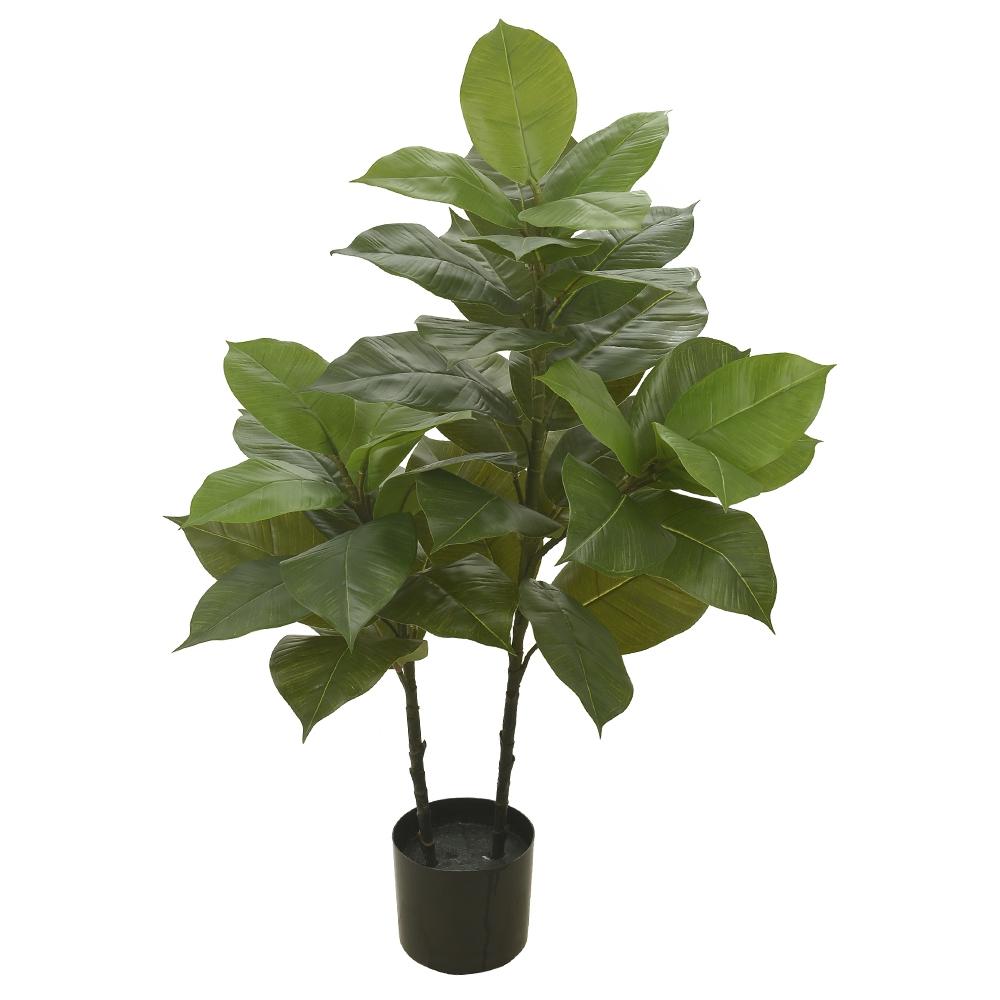 Ficus Elástica Verde Permanente c/Pote 1m