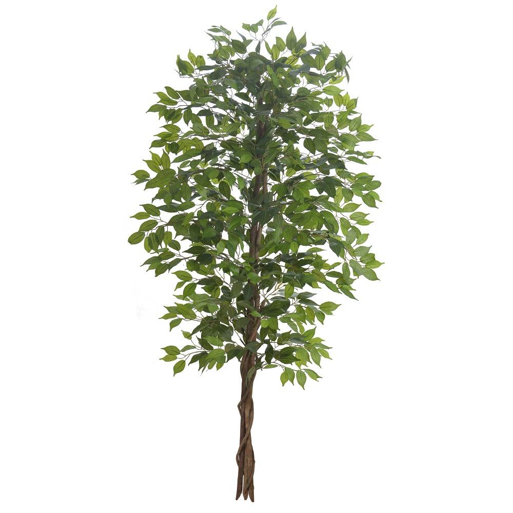 Ficus Verde Permanente 2,1m