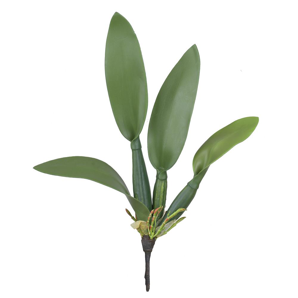 Folha Verde de Orquídea Cattleya c/Arame 38cm