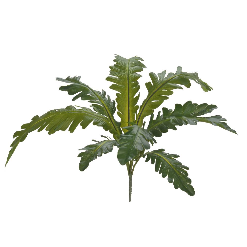 Folhagem Asplenio Real Verde Permanente 35cm